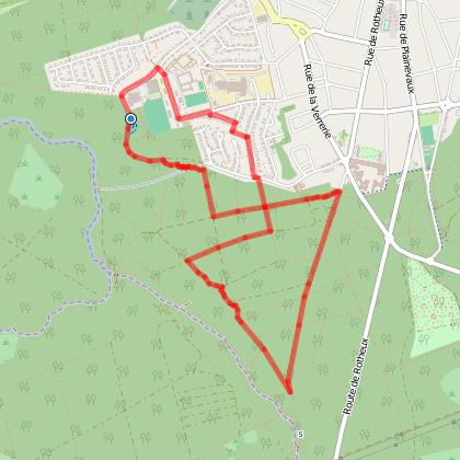 6km dans les bois