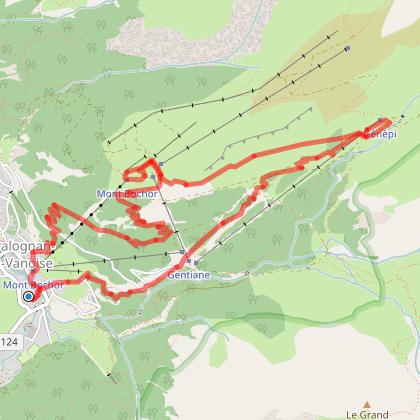 Pralognan le mont Bochor