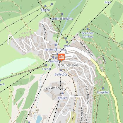 Location de VAE: Espace VTT Courchevel 1850