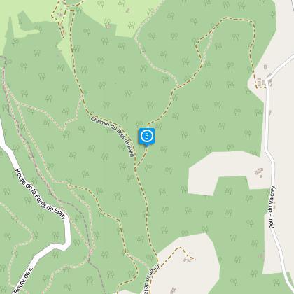 Bois de Bard (alt. 390m)