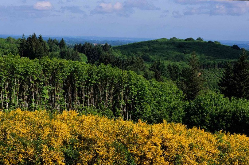 La Grande boucle du Parc Périgord-Limousin