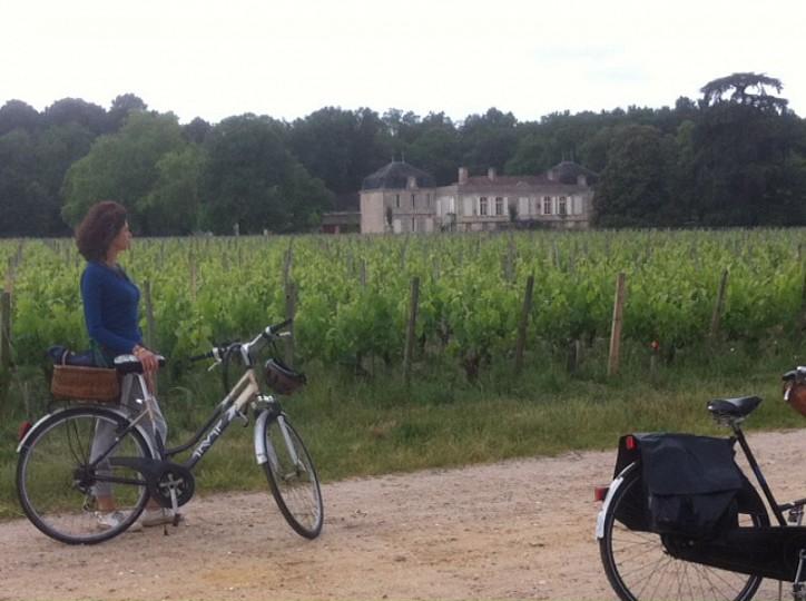 Les vignes en ville Bordeaux-Métropole