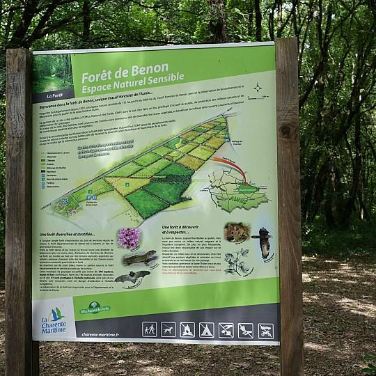 10) Randonnée pédestre – Balade forestière – Benon