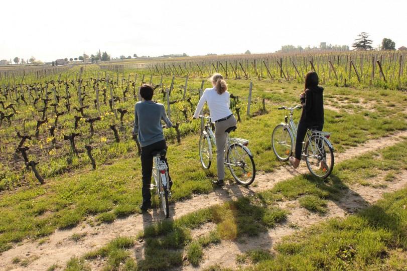 Boucle vélo : Les Côtes de Castillon