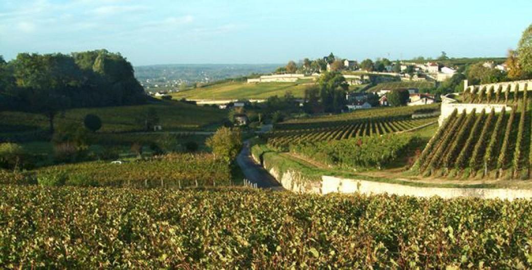 Boucle vélo: La route des vins famille