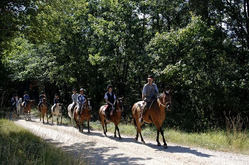 Tour du Tarn à cheval : Puycelsi / Bruniquel