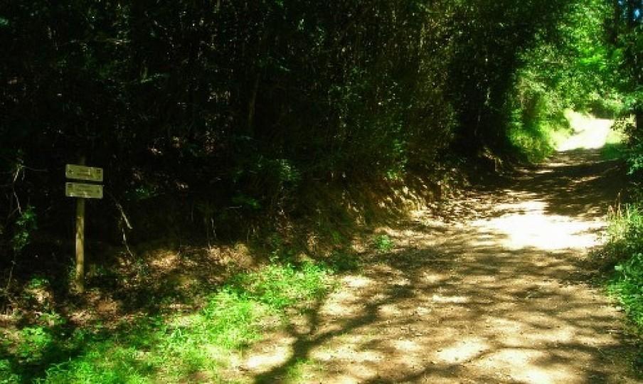 Le chemin des Vallées