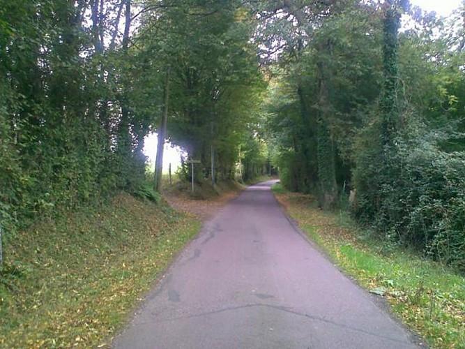 grande balade à vélo autour de Cambremer et de la route du cidre