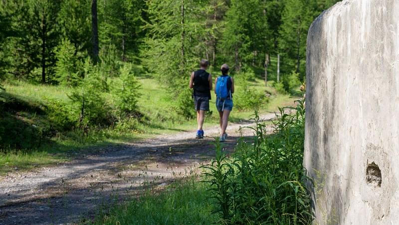 Balade idéale Famille - Le belvédère du Bois de Sestrières
