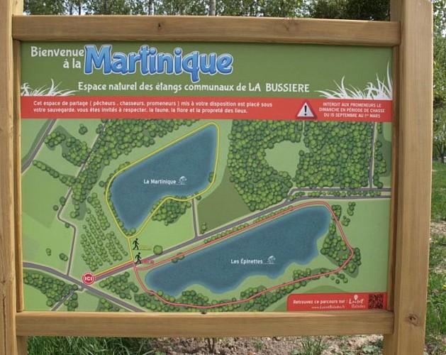 Etang de la Martinique