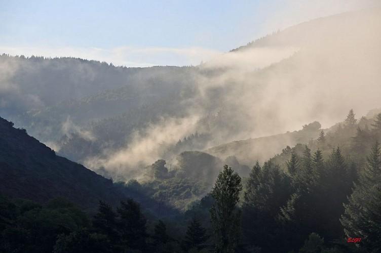 Brumes sur le Mont Aigoual