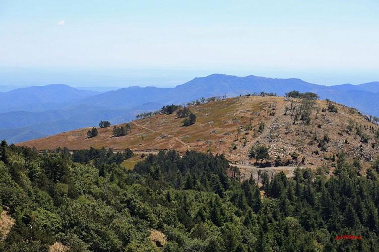 En Montant vers le sommet de l'Aigoual