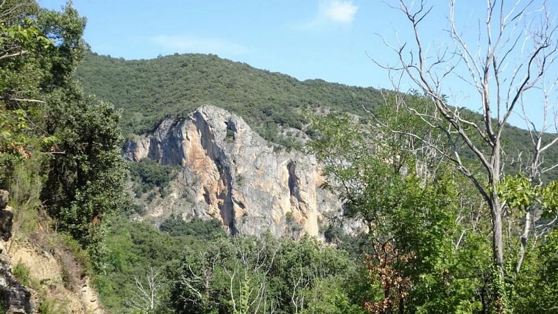 Roca Maler