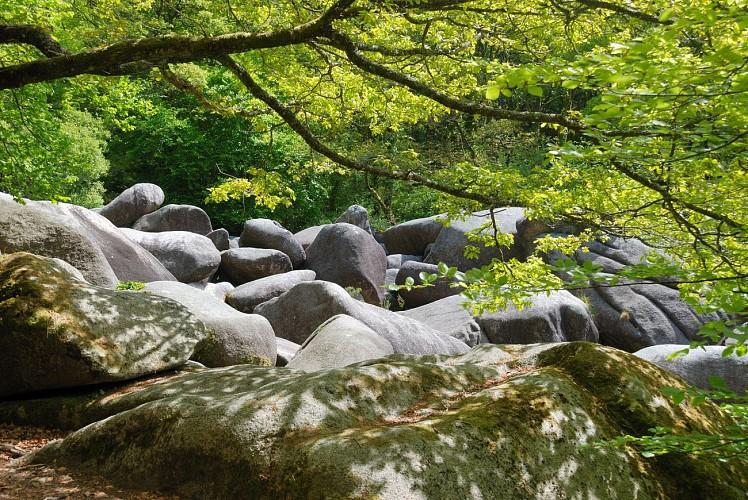 Le Kreiz Breizh entre nature préservée et patrimoine authentique