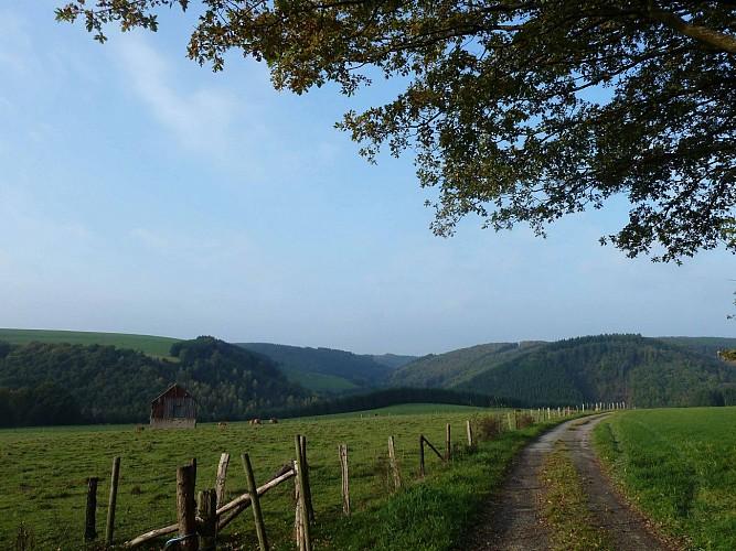 Les paysages cachés - Tronçon 3 - Derenbach - Clervaux