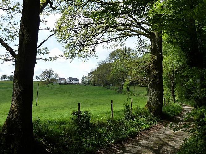 Les paysages cachés - Tronçon 2 - Wiltz - Derenbach