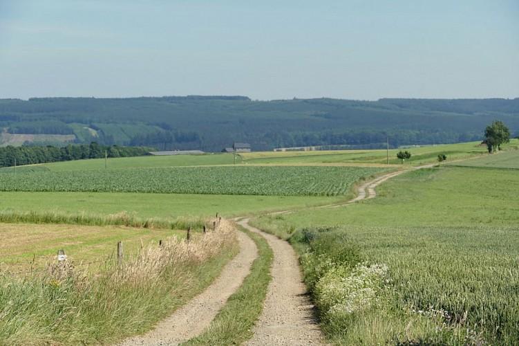 Paysages et Patrimoine, A travers champs (13km)