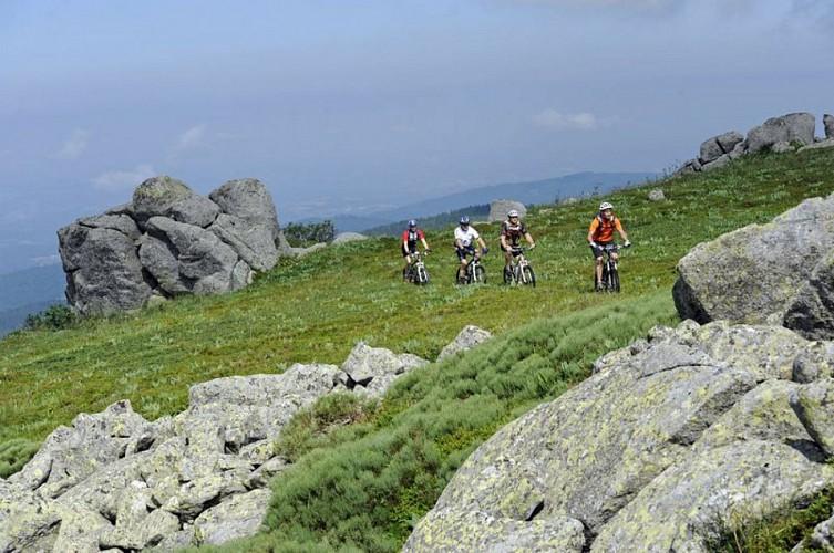 Tour du Parc naturel régional Livradois-Forez à VTT