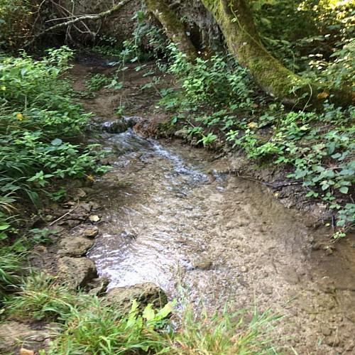 ruisseau des eaux claires