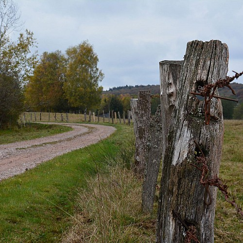 le Châtis Bois