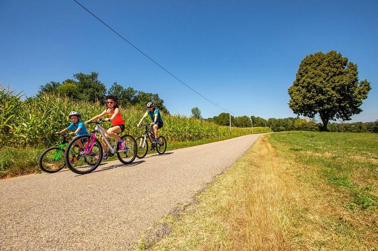 Boucle VAE et vélo La Vaulserre