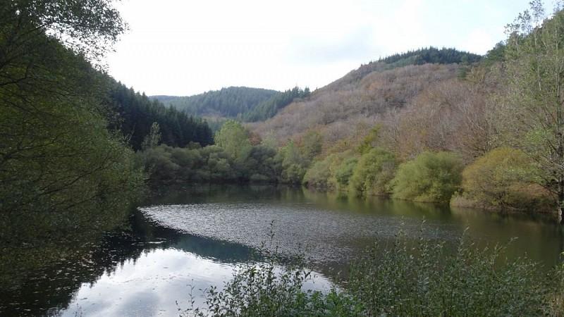 Barrage sur le ruisseau de Rascas