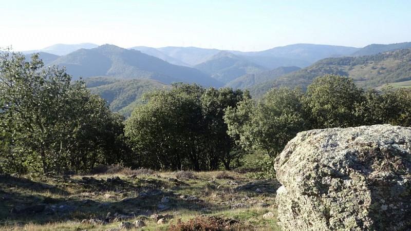 vue du Col du Buis vers Ouest