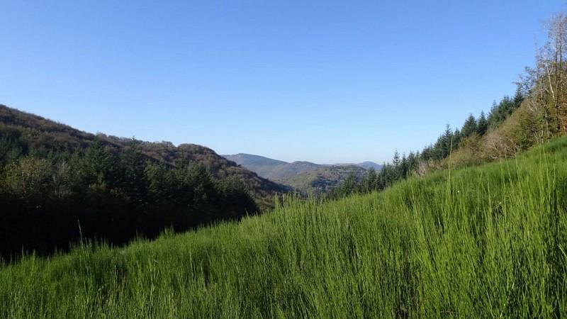 Vue du Col du Tigneral vers l'Ouest