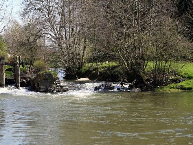 Felleries Sentier des moulins à eau