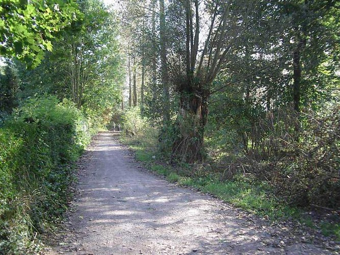Wandignies-Hamage Circuit du prieuré