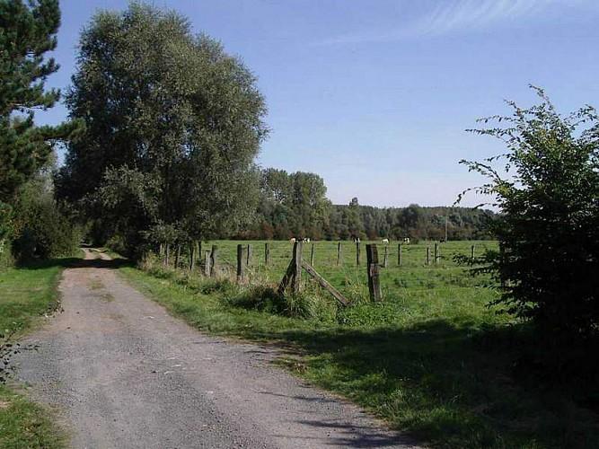 Wandignies-Hamage circuit du grand vivier