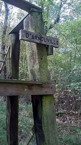Bois de Binanville - C'est bien fléché!