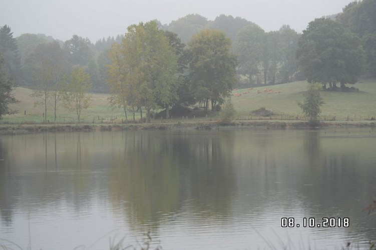 l' étang