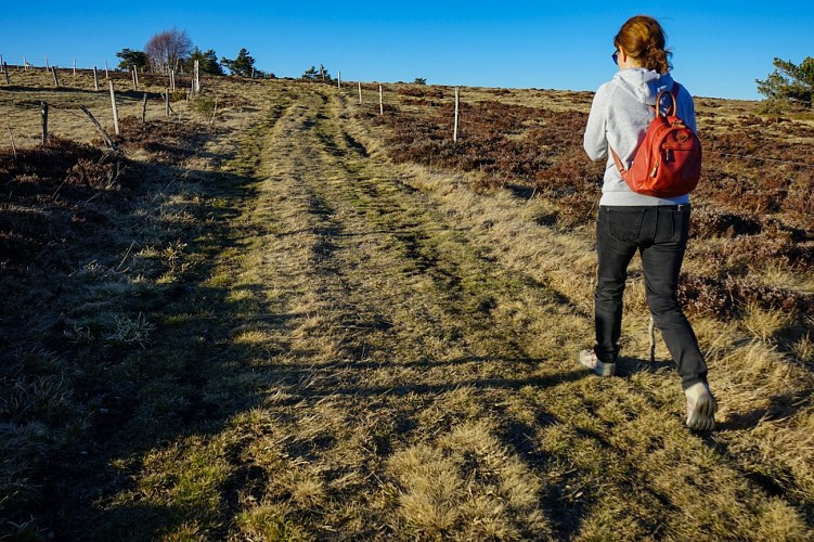 La Vallée sauvage de Chorsin - circuit pédestre