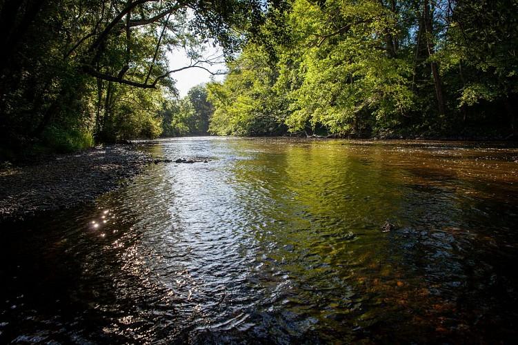 La rivière Sioule