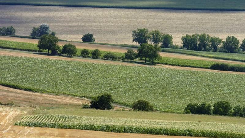 Plaine de la Limagne
