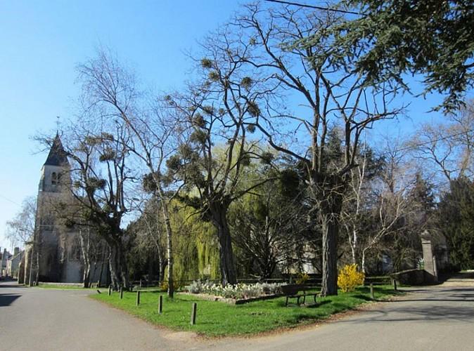 La forêt de Marchenoir… à vélo