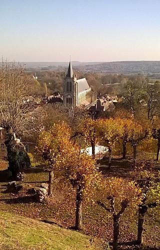 Montfort l'Amaury - L'Eglise vue de la Tour