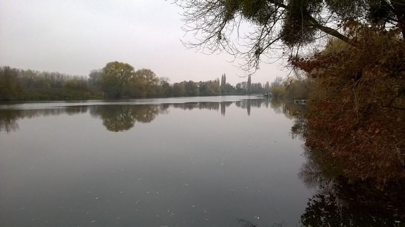 Bords de Seine par journée brumeuse