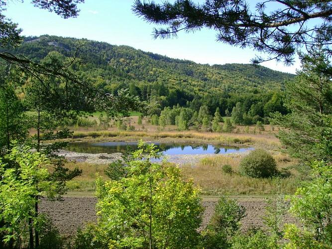Le lac de St Léger N°4 - Très facile 5km - 1h