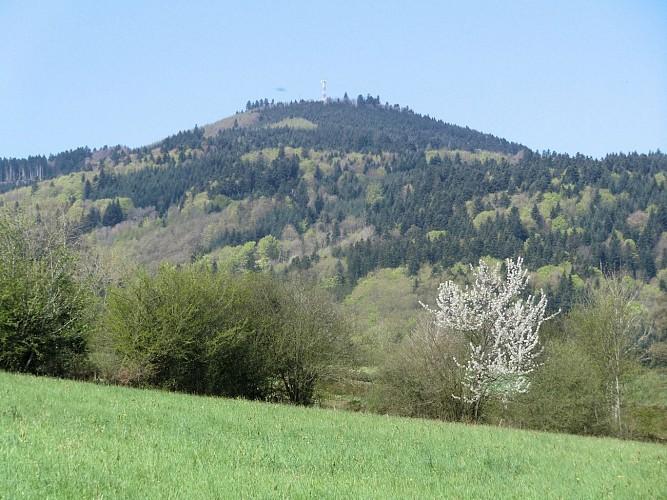 Trail du St Rigaud
