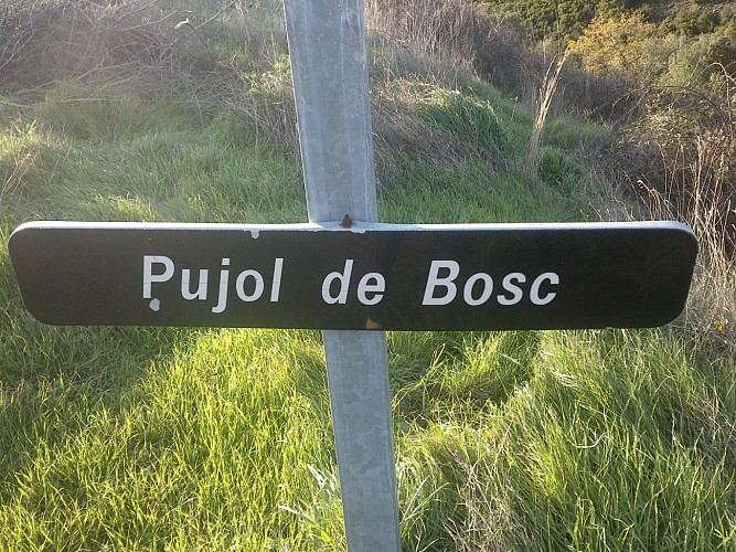 Villeuneuve Minervois -Pujol de Bosc