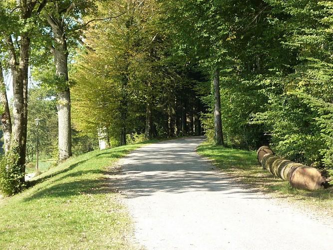 Circuit VTT n°37 - La balade des vergers - Vallée de l'Ognon