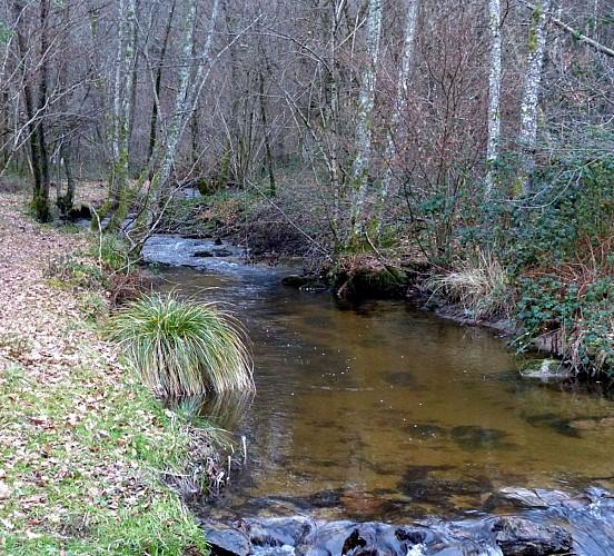 Tour Parc Naturel Regional Millevaches en Limousin Etape 01. Boucle Au départ de Bourganeuf