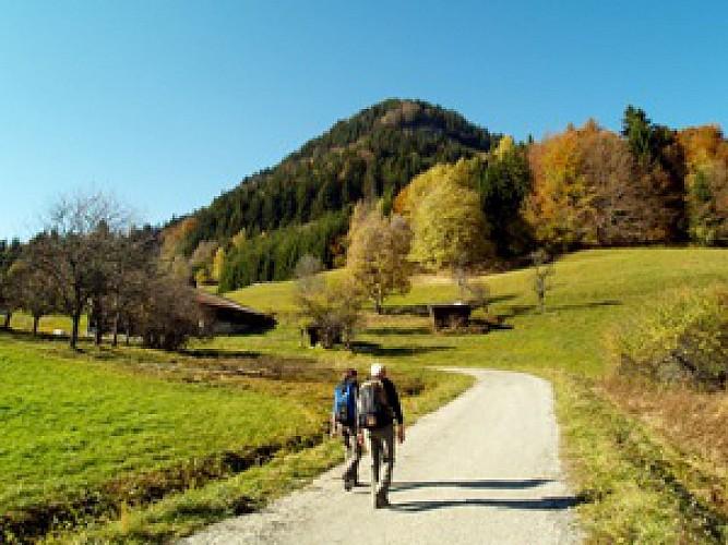 Experienced walkers -  Le bois des Têtes