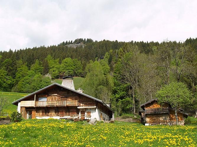 Mont du Villard