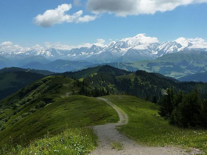 "Foot path "" La tête du Torraz """