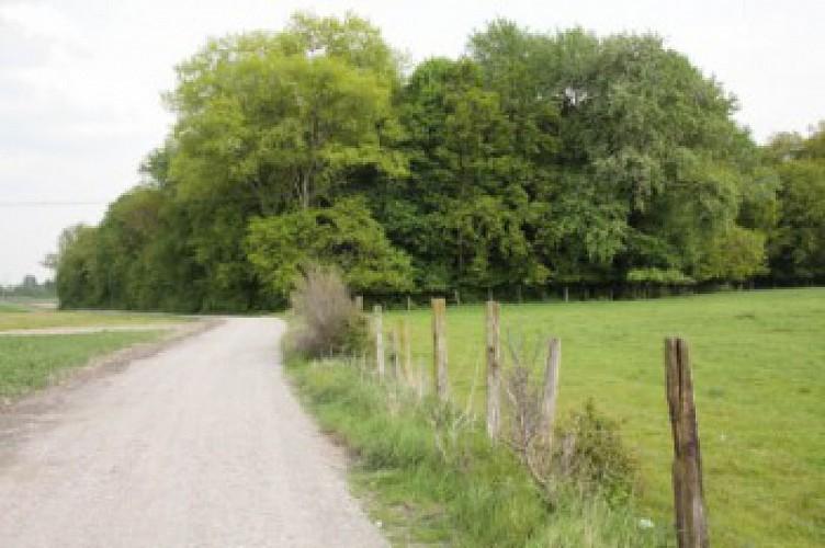 Sentier de la Motte 3