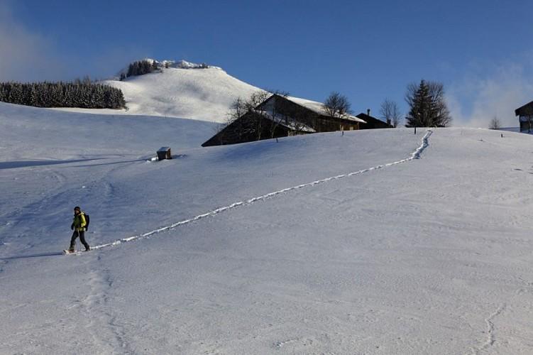 "Randonnée raquettes ""Col de la Balme"""