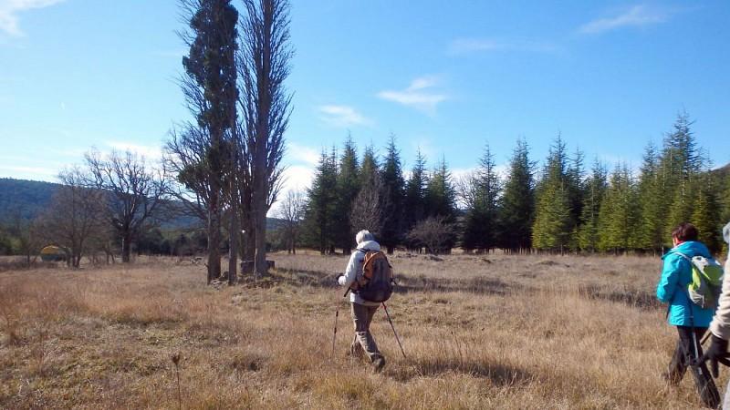 Plateau d'Agnis
